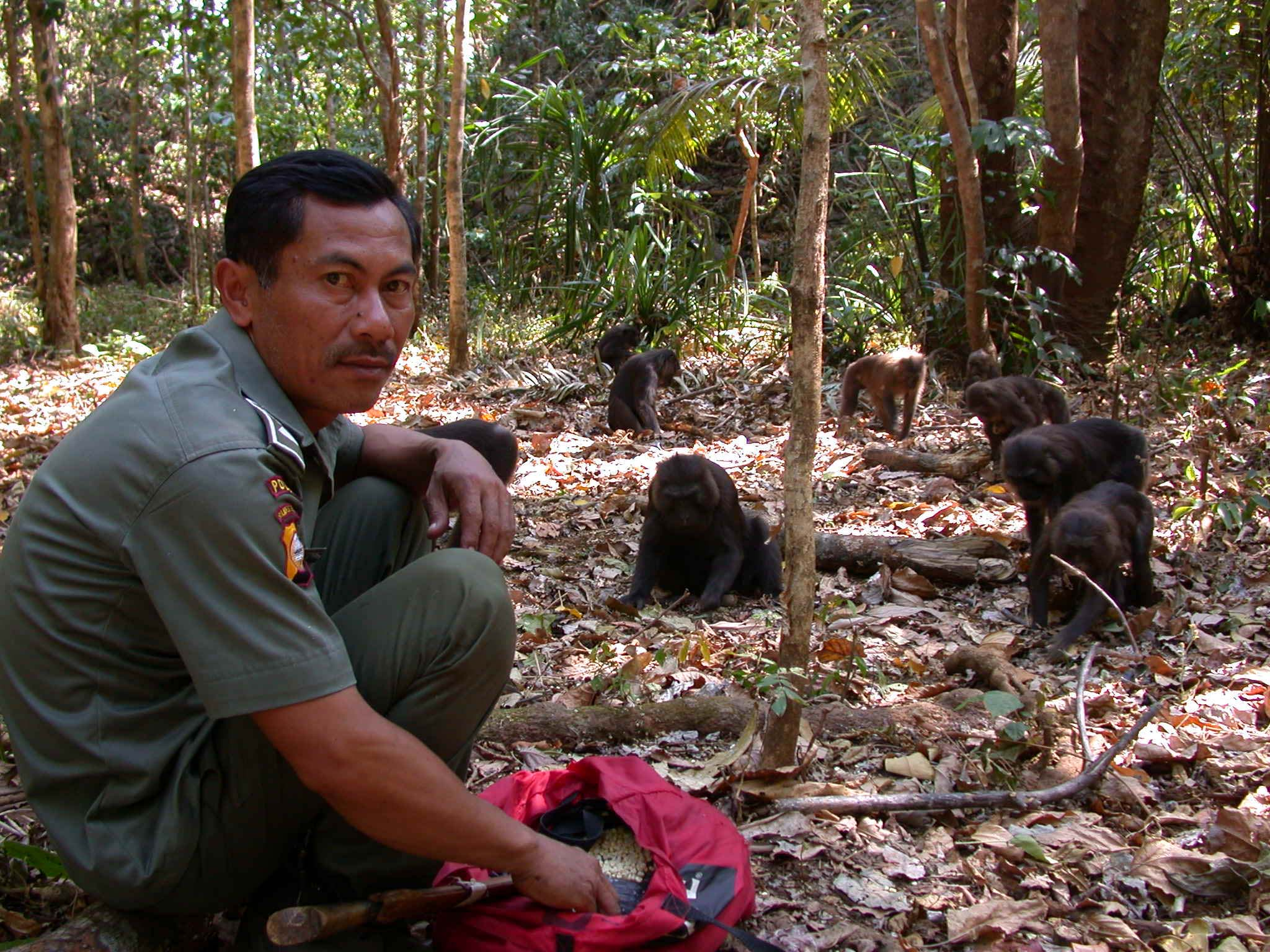 Haro Kearifan Seorang Tarzan Dari Maros Dr M Subhan Sd